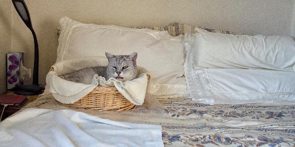 Детско спално бельо 51